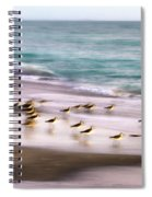 Sandpiper Evening Spiral Notebook