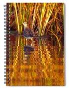 Sandpiper Wading For Food, Yukon Spiral Notebook