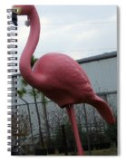 Santa Bird Spiral Notebook
