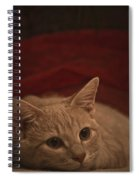 Santa Is Coming Spiral Notebook