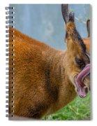 Satanic Tongue Spiral Notebook
