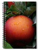 Satisfaction Guaranteed Spiral Notebook