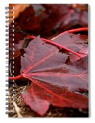 Saturated Maroon Spiral Notebook