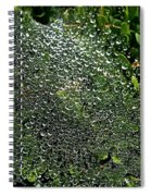 Saturated Spider Web Spiral Notebook