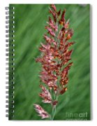 Savannah Ruby Grass Spiral Notebook