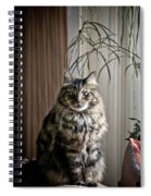 Say Meowww Spiral Notebook