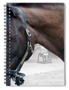 Sc-042-12 Altered Spiral Notebook