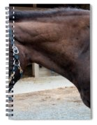 Sc-045-12 Spiral Notebook