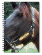 Sc-049-12 Effects Spiral Notebook