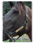 Sc-049-12 Spiral Notebook
