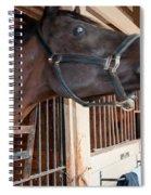 Sc-054-12 Spiral Notebook