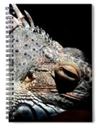 Scales And Spikes Spiral Notebook