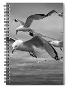 Sea Gull Scavengers Spiral Notebook