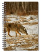 Scent Of A Doe Spiral Notebook