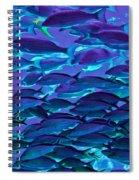 School Daze Spiral Notebook