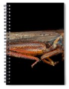 Science - Entomology - The Specimin Spiral Notebook