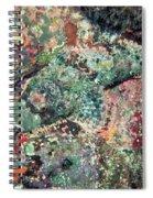 Scorpionfish Spiral Notebook