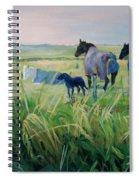Scotland Fields Spiral Notebook