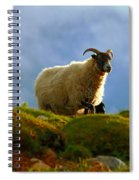Scottish Blackface Spiral Notebook