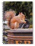 Scratchy Spiral Notebook
