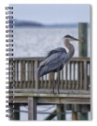 Scruffy Heron Spiral Notebook