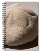 Sea Biscuit Clypeaster Rosaceus Spiral Notebook