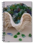 Sea Glass In Clam Shell - No 1 Spiral Notebook