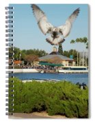 Sea Gull With Full Flaps Spiral Notebook