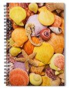 Sea Horse Starfish And Seashells  Spiral Notebook