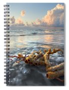 Sea Jewel Spiral Notebook