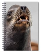 Sea Lion And Yellow Fangs Spiral Notebook