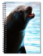 Sea-lion Spiral Notebook