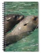 Sea Lions Spiral Notebook