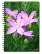 Sea Rose Flower Spiral Notebook