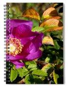 Sea Rose Srp Spiral Notebook