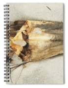 Sea Scarf Spiral Notebook