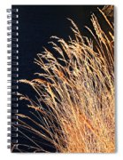 Seagrass In Gold Spiral Notebook