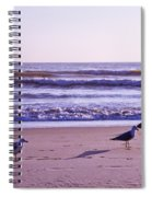 Seagull Alliance Spiral Notebook