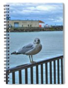 Seagull At Lighthouse Spiral Notebook