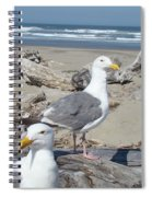 Seagull Bird Art Prints Coastal Beach Bandon Spiral Notebook
