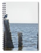 Seagull On A Post Spiral Notebook