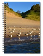 Seagulls At The Bowl Spiral Notebook