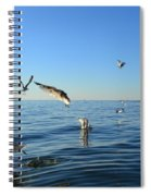 Seagulls Over Lake Michigan Spiral Notebook