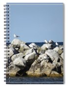Seaguls On Boulders In Lake Erie Spiral Notebook