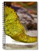 Seahorse Of Course Spiral Notebook