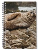 Seal Old Timers Spiral Notebook