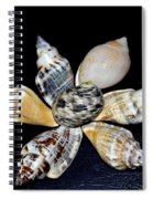 Seashell Floral Spiral Notebook