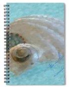 Seashells In Aqua Spiral Notebook