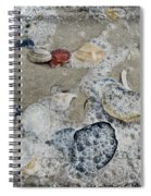 Seashells In The Surf Spiral Notebook