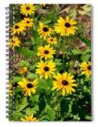 Season In The Sun Spiral Notebook